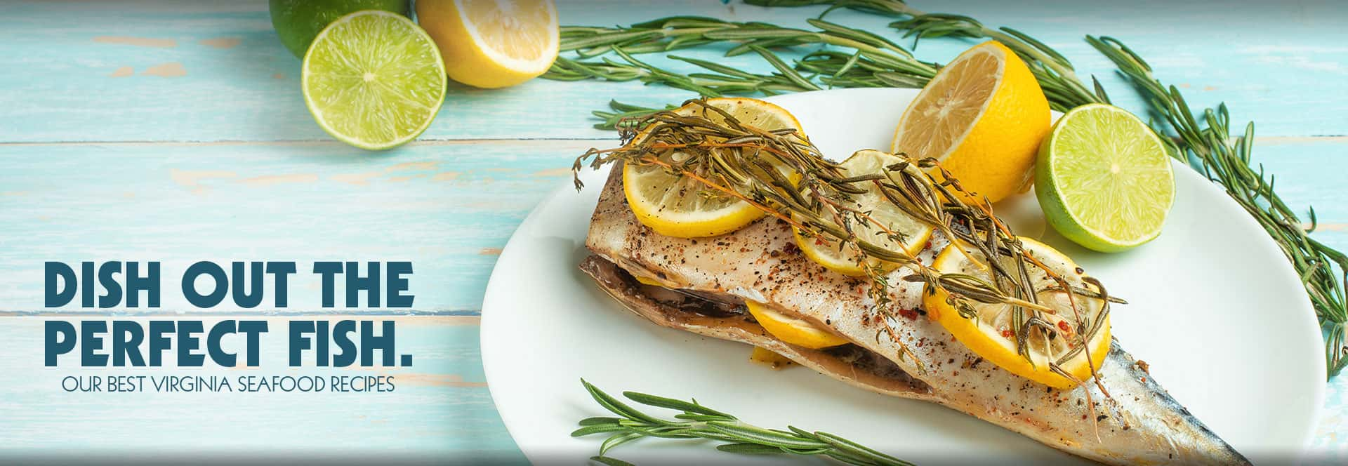 Dish Out the Perfect Fish — our best Virginia Seafood recipes.